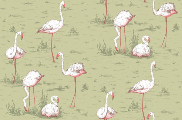 Flamingos - Olive - Wallpaper Trader