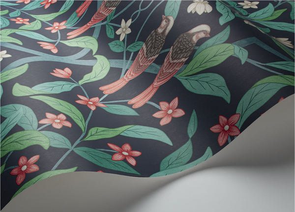 Jasmine & Serin Symphony-  Coral & Petrol on Ink - Wallpaper Trader