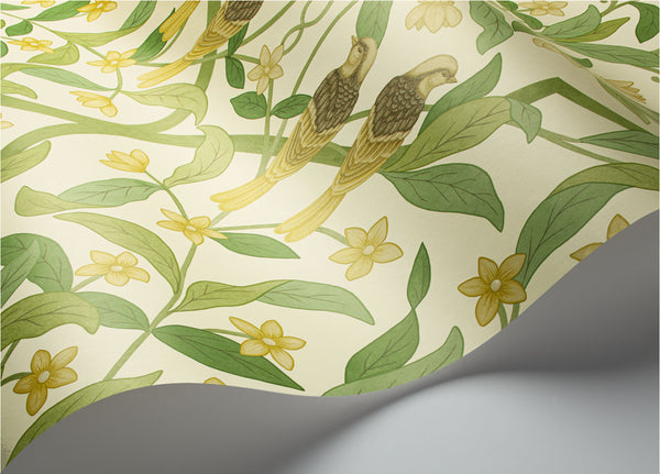Jasmine & Serin Symphony - Chartreuse & Olive Green on White - Wallpaper Trader