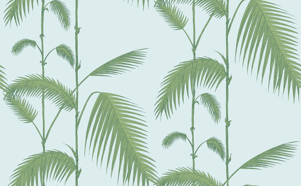 Cole and Son Palm Leaves wallpaper in Green on Light Blue. Update your walls with this rainforest-inspired paper based on the classic Palm Leaves print.