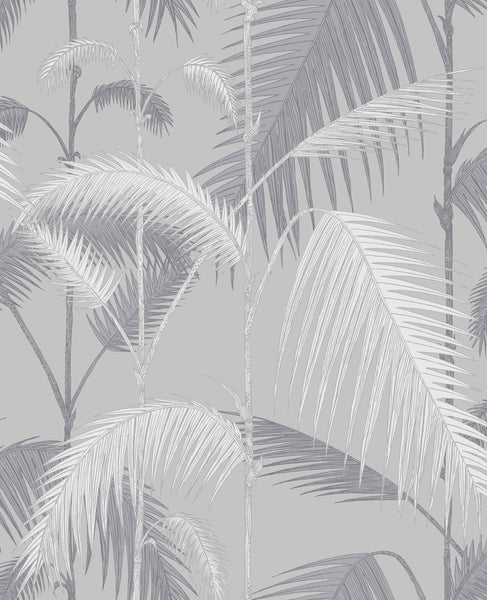 Beautiful stylish wallpaper, the classic palm jungle print is on a silver metallic background.  Use this wallpaper to transform any room into a glamorous space. Update your walls with this rainforest-inspired paper based on the classic Palm Leaves print. Here, the single palm frond has been layered to create the illusion of a jungle of foliage, in turn adding depth and texture to any room. Available in five inspired colour ways this print is a contemporary take on the original wallpaper pattern.