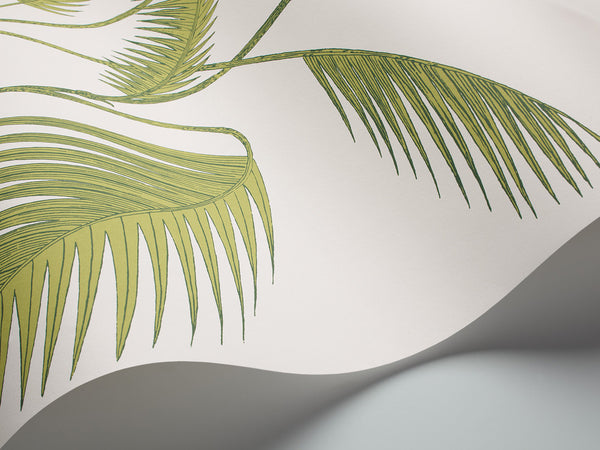 Cole and Son Palm wallpaper in Leaf Green on White from The Contemporary Restyled Collection (95/1009). Use this wallpaper to transform any room into a glamorous space. Update your walls with this rainforest-inspired paper based on the classic Palm Leaves print.