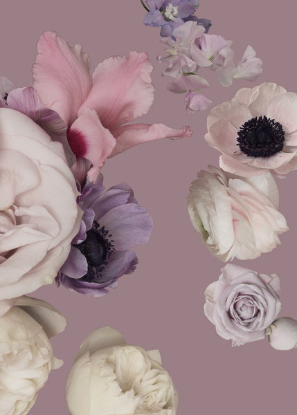 This wallpaper pattern is inspired by Madame de Pompadour and consists of roses, anemone, sweet pea and persian buttercup. The colours of the flowers ranges from lilac and pale pink to burgundy, against a dusty pink background.