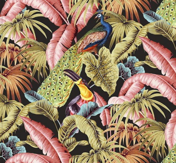 Toucan Tropics - Black - Wallpaper Trader