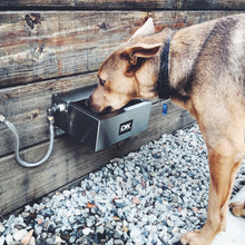 Pet Rehydration Station XS