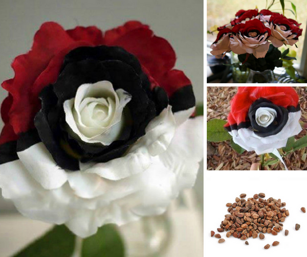 100 pieces of Exquisite Pokemon Rose plant Seeds - Promotional Giveaway