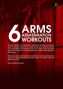 6 Arm Assassination Workouts