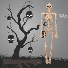 Load image into Gallery viewer, 👻 Movable Skeleton Model  - Kwikibuy Amazon Global Online S Hopping Mall Halloween Hanging Props Height: 15.7 inches Material: PP and PVC and ABS