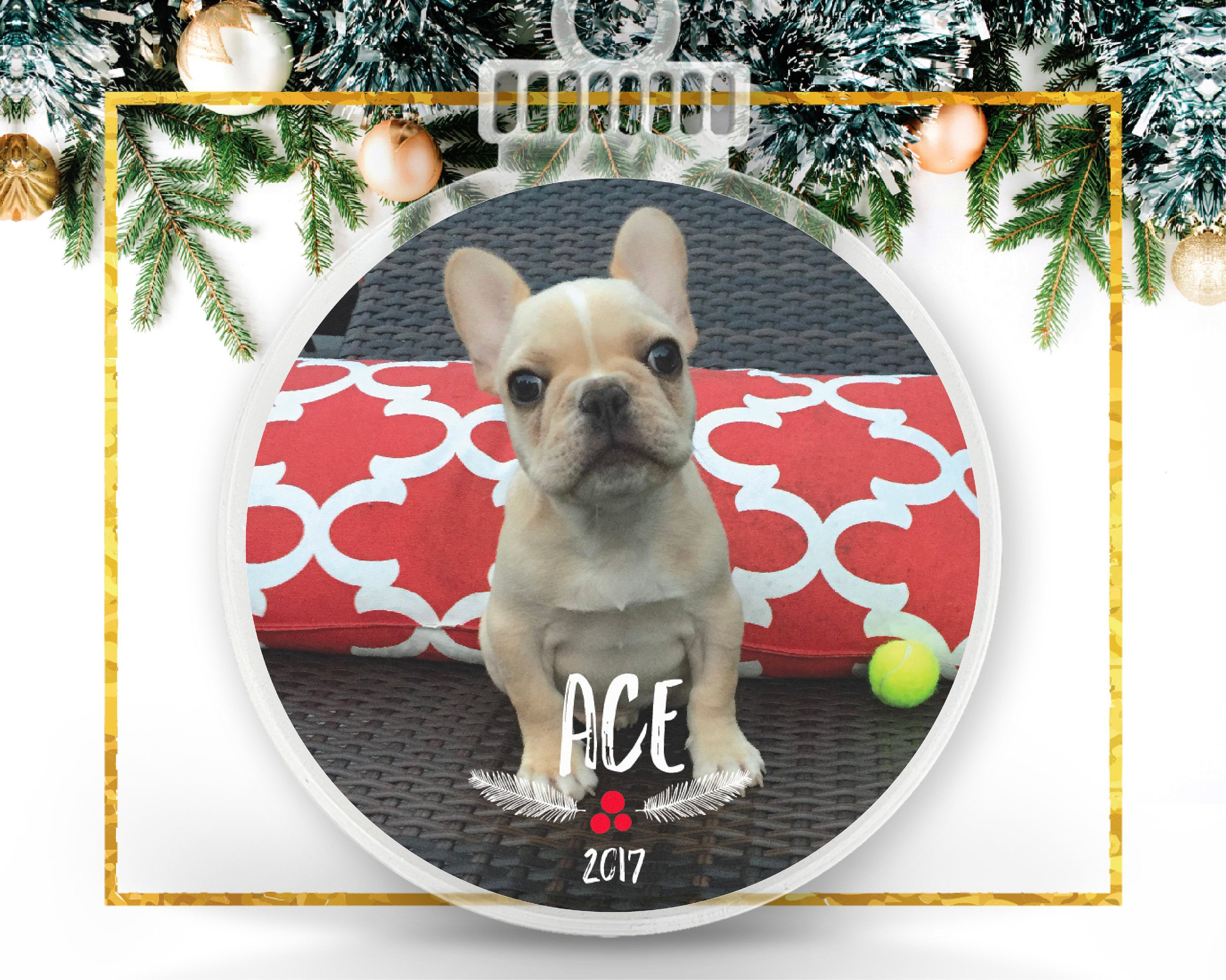 French Bulldog Custom Photo Ornament