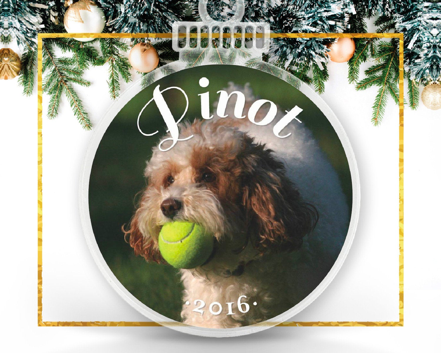 Furry Friend Personalized Photo Ornament