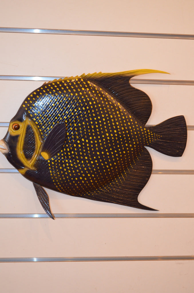 Carved French Angelfish