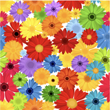 Colorful Daisies Patterned Vinyl - Craft Vinyl