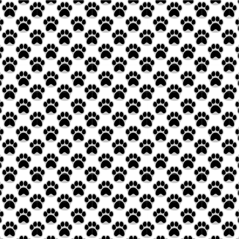 Black & Gray Pawprints Printed Craft Vinyl