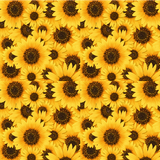 Sunflowers Patterned Printed Vinyl