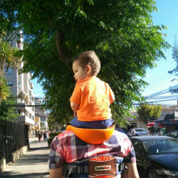 PIGGYBACK RIDER CHILD COURIER