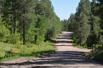 Just Listed - 161 Squirrel Trail in Jemez Springs