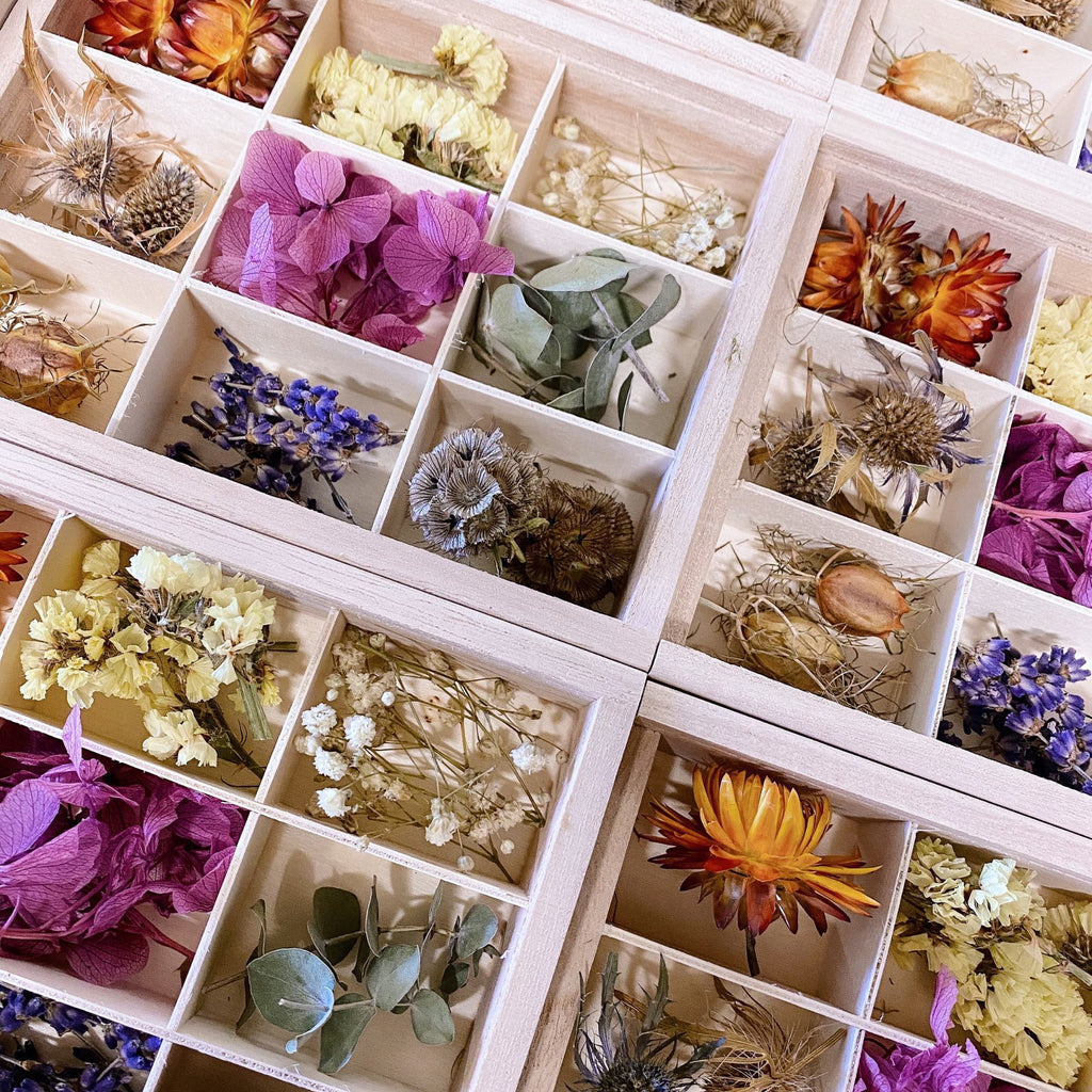 Sensory Dried Flower Box - honeybee blooms