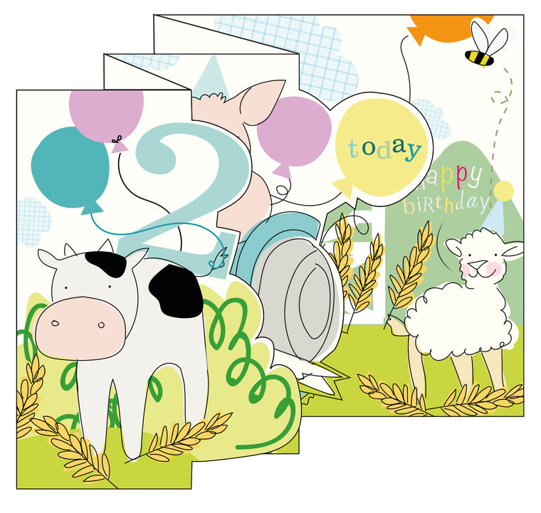 Zigzag Fold Out Card 2 Boy Farm