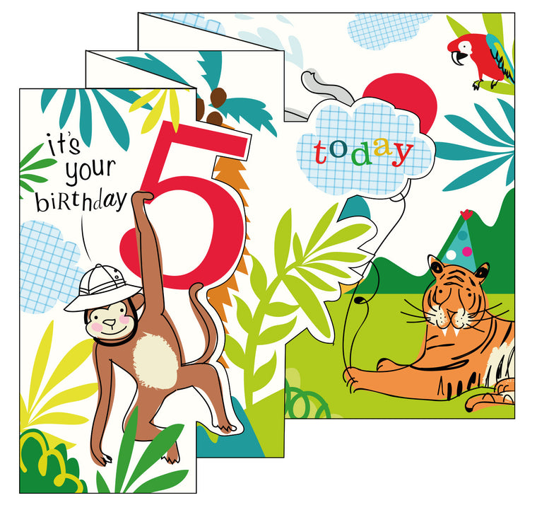 Zigzag Fold Out Card 5 Boy Safari