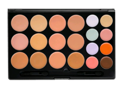 BeBella Cosmetics * Professional Concealer Palette 20pc