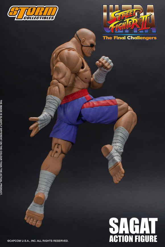 Street Fighter - Sagat - Action Figure