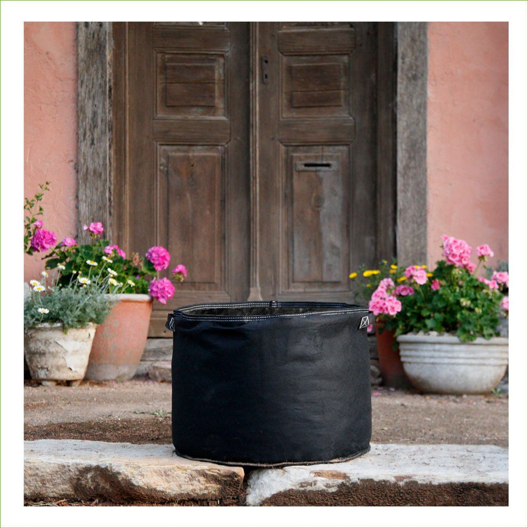 Black Felt Veggie Growing Planter with Handles 550mmx400mm