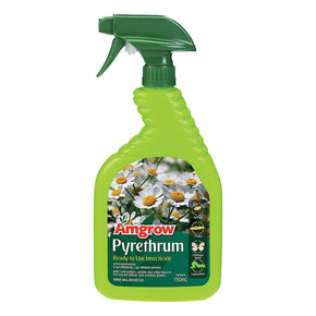 Pyrethrum Insecticide (Premixed) Amgrow 750ml