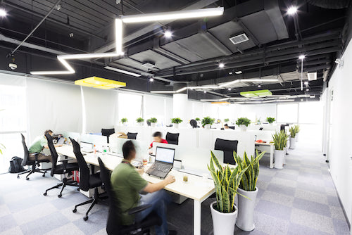 Did you know good lighting and sound can improve productivity in workplace?