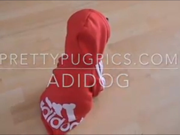 Red Adidog sweatshirt for dogs - Pretty Pug Pics