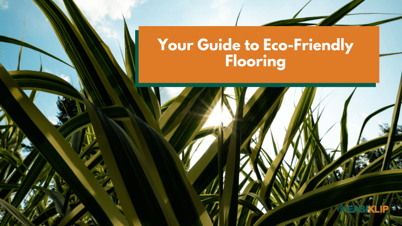 Your Guide to Eco-Friendly Flooring