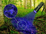 Best Seller UV Flashlight Blacklight