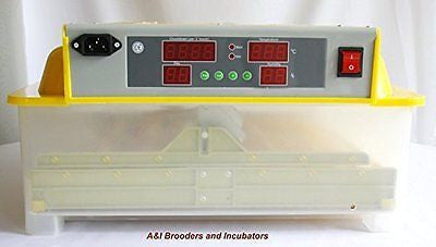 A&I 48 Egg Digital Incubator / Hatcher AUTOMATIC TURNER Avian Poultry Local USA