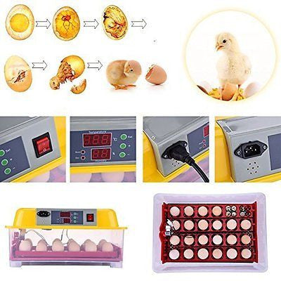 TAONMEISUTM Fully Automatic Digital Poultry Incubator Hatcher 24 Eggs Temperatur