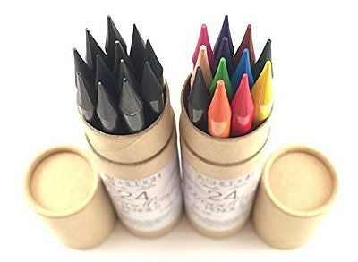 Ashleigh Nicole Arts 12 Woodless Colored Pencils Plus Graphite and Charcoal