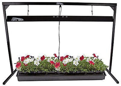 Apollo Horticulture Purple Reign 4' Foot 2 Bulb 54W 6400K Jump Start T5 Grow
