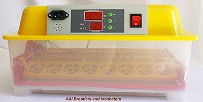 A&I 32 Chicken Poultry Egg Digital Incubator / Hatcher AUTOMATIC TURNER Avian Po