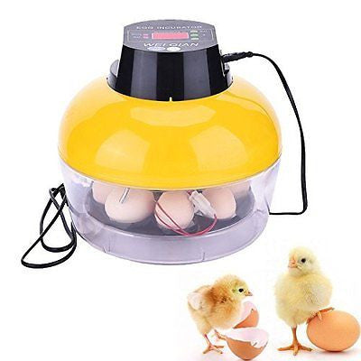 Samber Automatic Egg Turning Small Household Incubator Once Hatching 8 Eggs