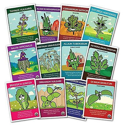 ORGANIC NON-GMO Culinary Herb Set - 12 popular Herb Seeds by Zziggysgal