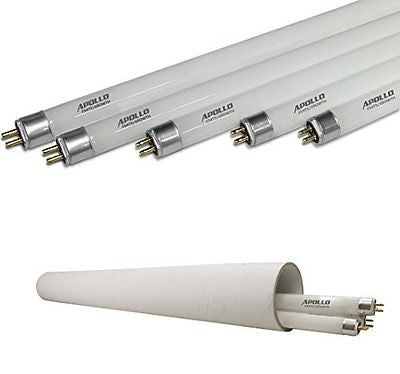 Apollo Horticulture 4 FT 6400K T5 Fluorescent Grow Light Bulbs - Pack of 5