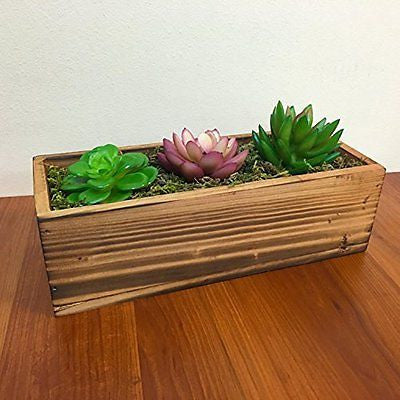Country Rustic Wood Planter w/ 3 Faux Succulent Plants & Moss