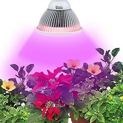 Gazeled Led Grow Lights for Indoor Plants 24W Full Spectrum LED Grow Light