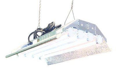T5 Grow Light (2ft 4lamps) DL824 Ho Fluorescent Hydroponic Bloom Veg Daisy
