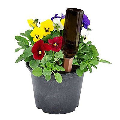 PLANTER PERFECT VACATION WATERING Automatic Self Water Plant Spikes