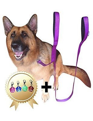 2 Handles Dog Leash - 8FT 2Inch Dual Handle Dog Leash - FREE Bonus Dog Tag