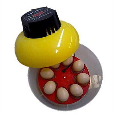 Generic Mini Automatic Incubator 8 eggs Duck Goose Bird Incubator Family hatch t