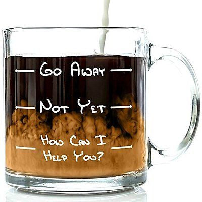 Go Away Funny Glass Coffee Mug 13 oz -Cool Present Idea