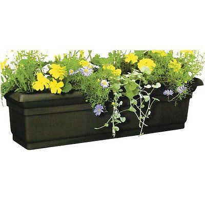 DCN Plastic 4224BK Distinction Window Box, Black