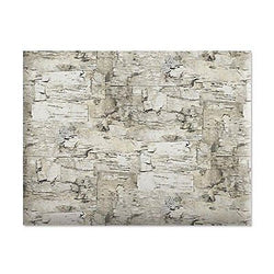 Birch Jumbo Rolled Gift Wrap (72 sq. ft. of heavyweight wrap)