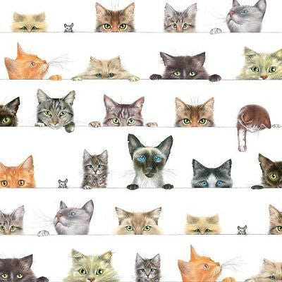 Entertaining with Caspari Gift Wrapping Paper, Kitties, 2-Sheets