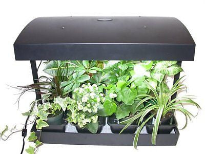 Future Harvest Development Sun Blaster Grow Light Garden